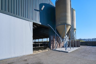 Lokale productie zuivel boerderij 1